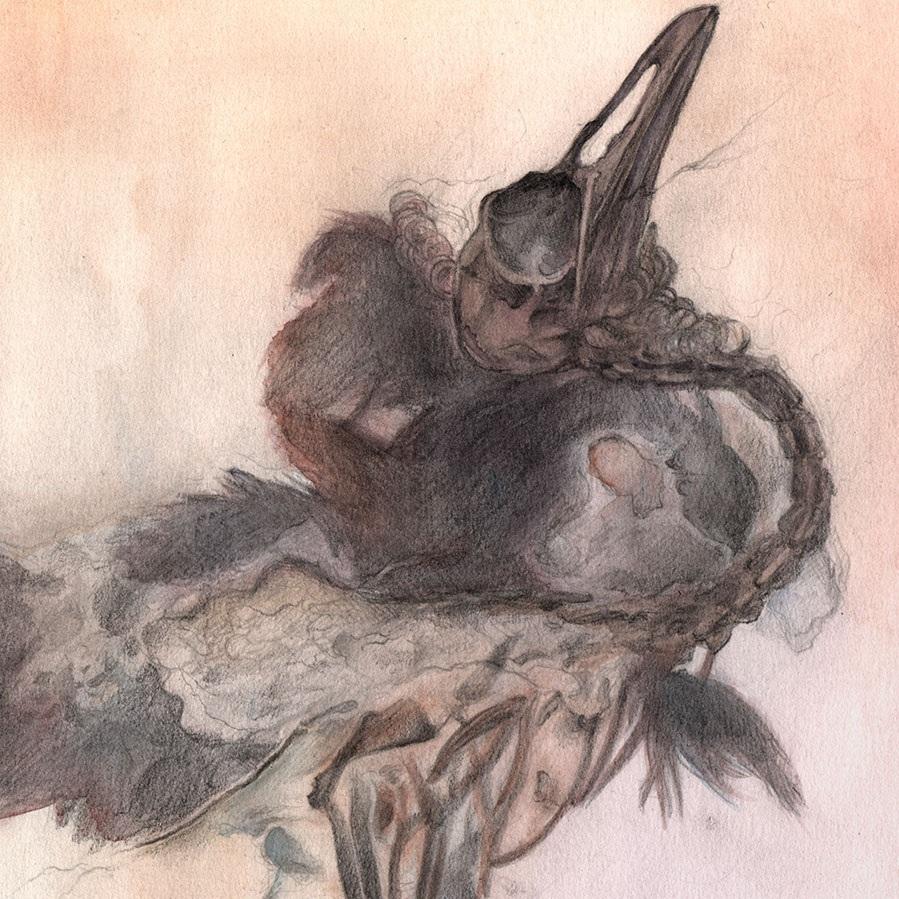 bird_fossil-web-closeup.jpg