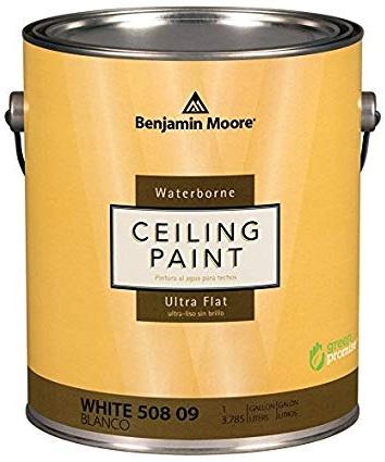 Water+Born+ceiling+paint.jpg
