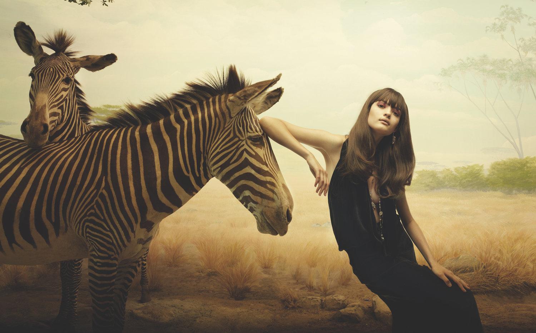 7x7_Dioramas_Zebra_Final.jpg