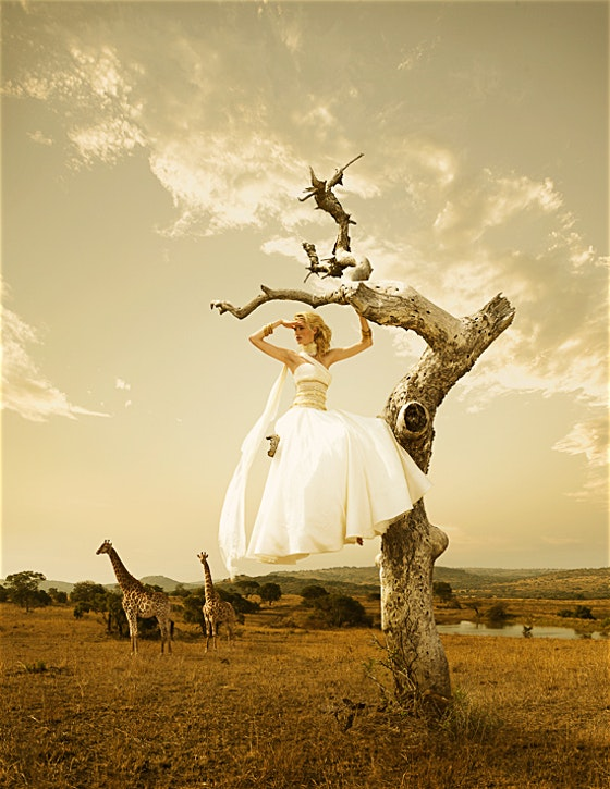 561_114_brides_africa_giraffes_ii_final_by-erik-almas---advertising-and-editorial-photographer.jpg