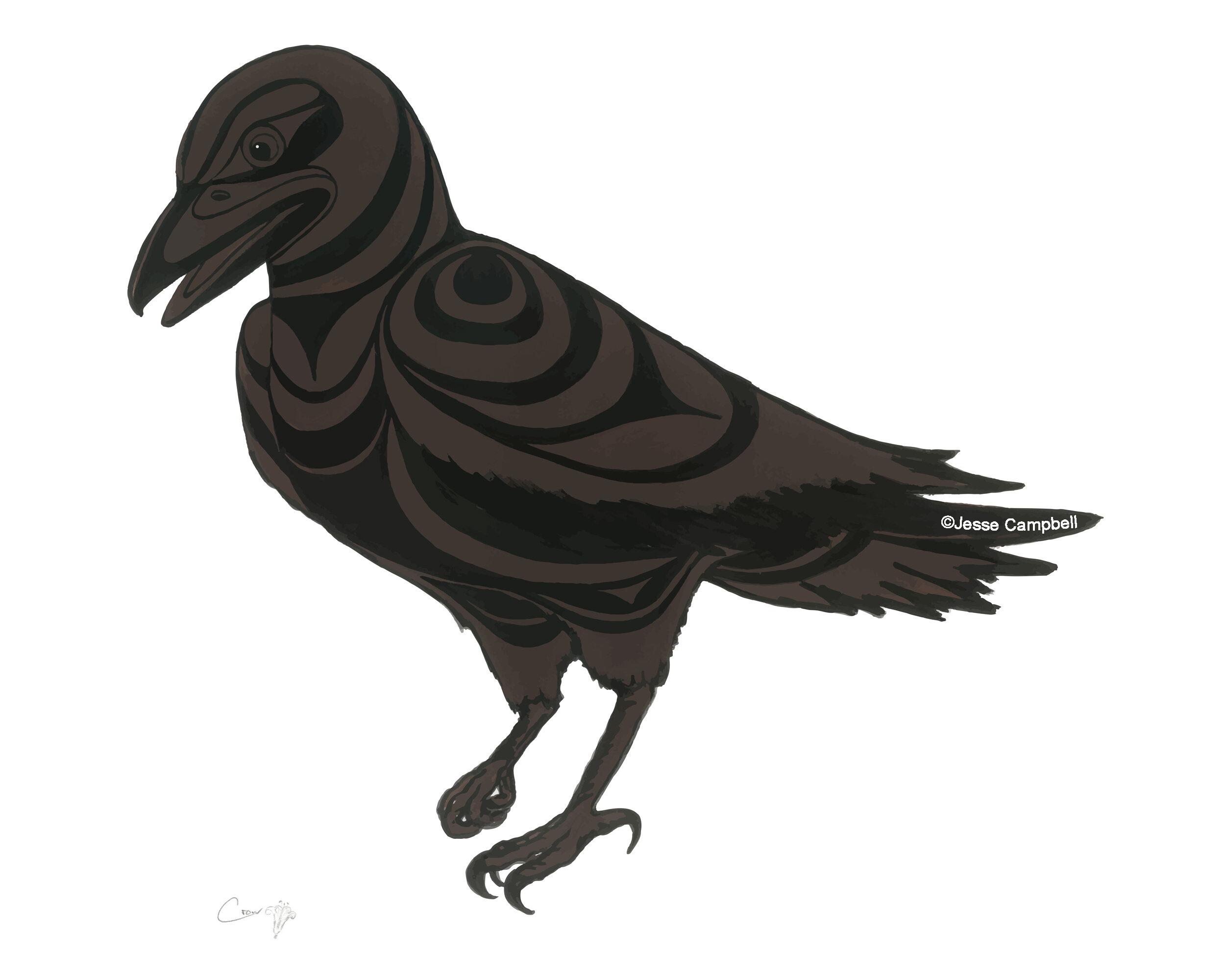Crow_JC.jpg