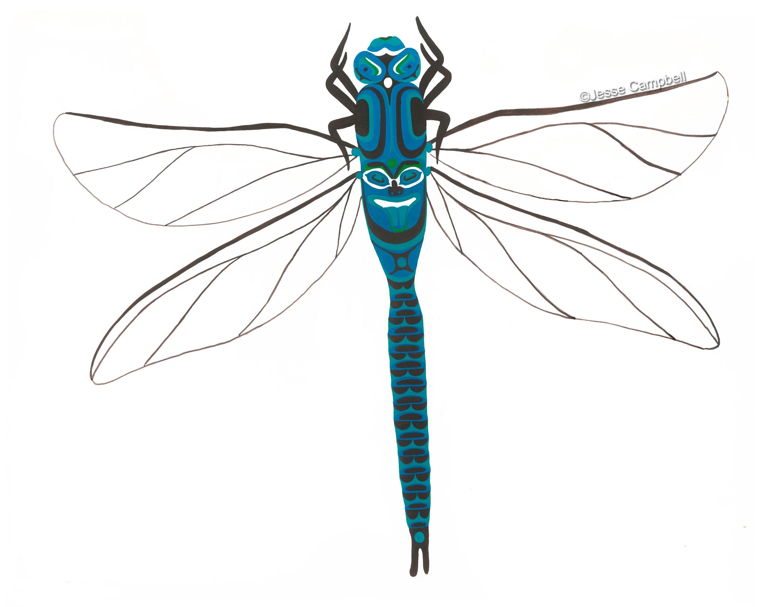 Dragonfly_JC.jpg