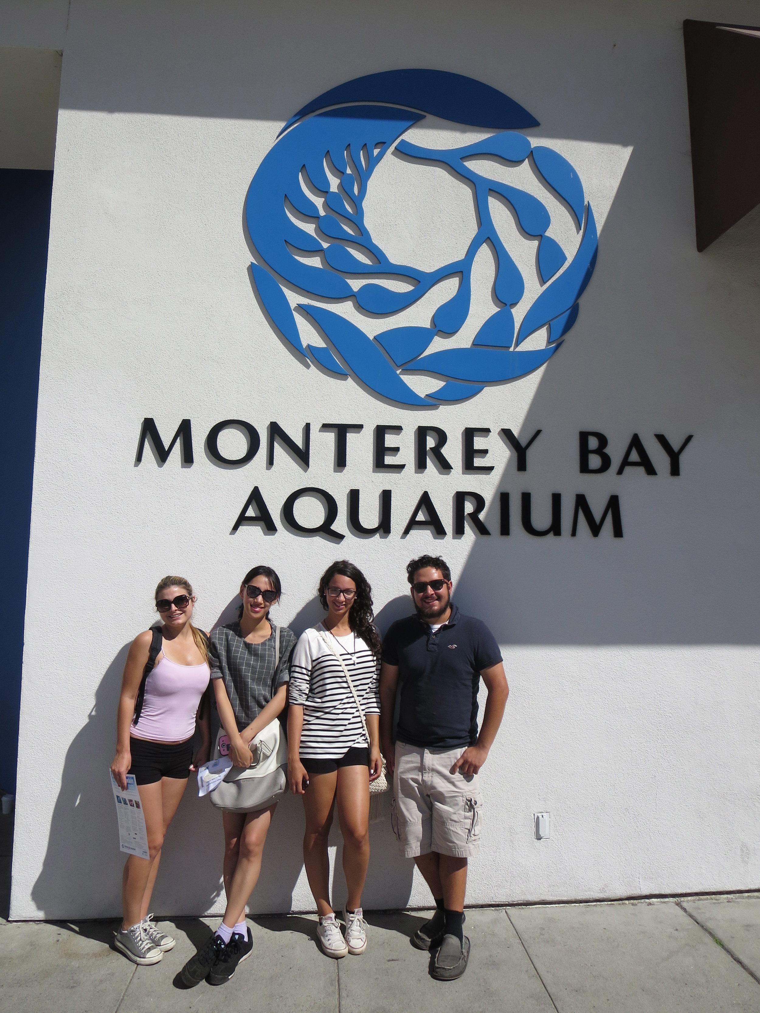 monterey bay aquarium, monterey, california.jpg