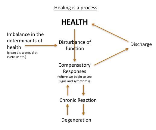 healing+process+diagram.jpg