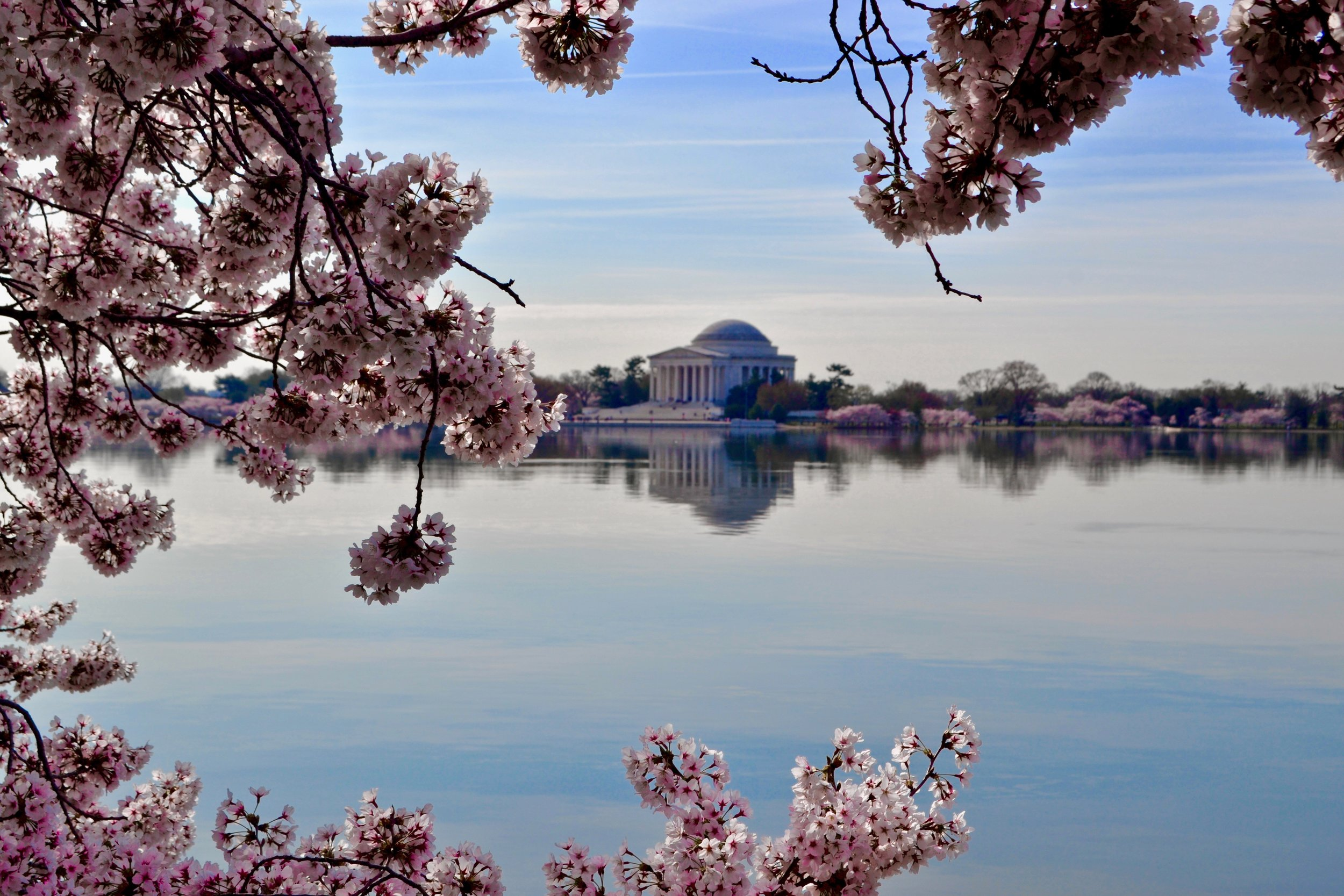Washington, dc & dmv area - Welcome to the DMV area! DC, Maryland and Virginia. Besides the politics and monuments, step into creative & museum hub of the DMV . Bar crawls, festivals aplenty and r&b sets.