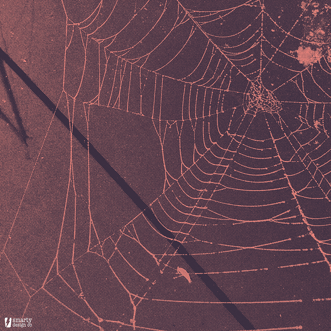 71 - spider 2.jpg