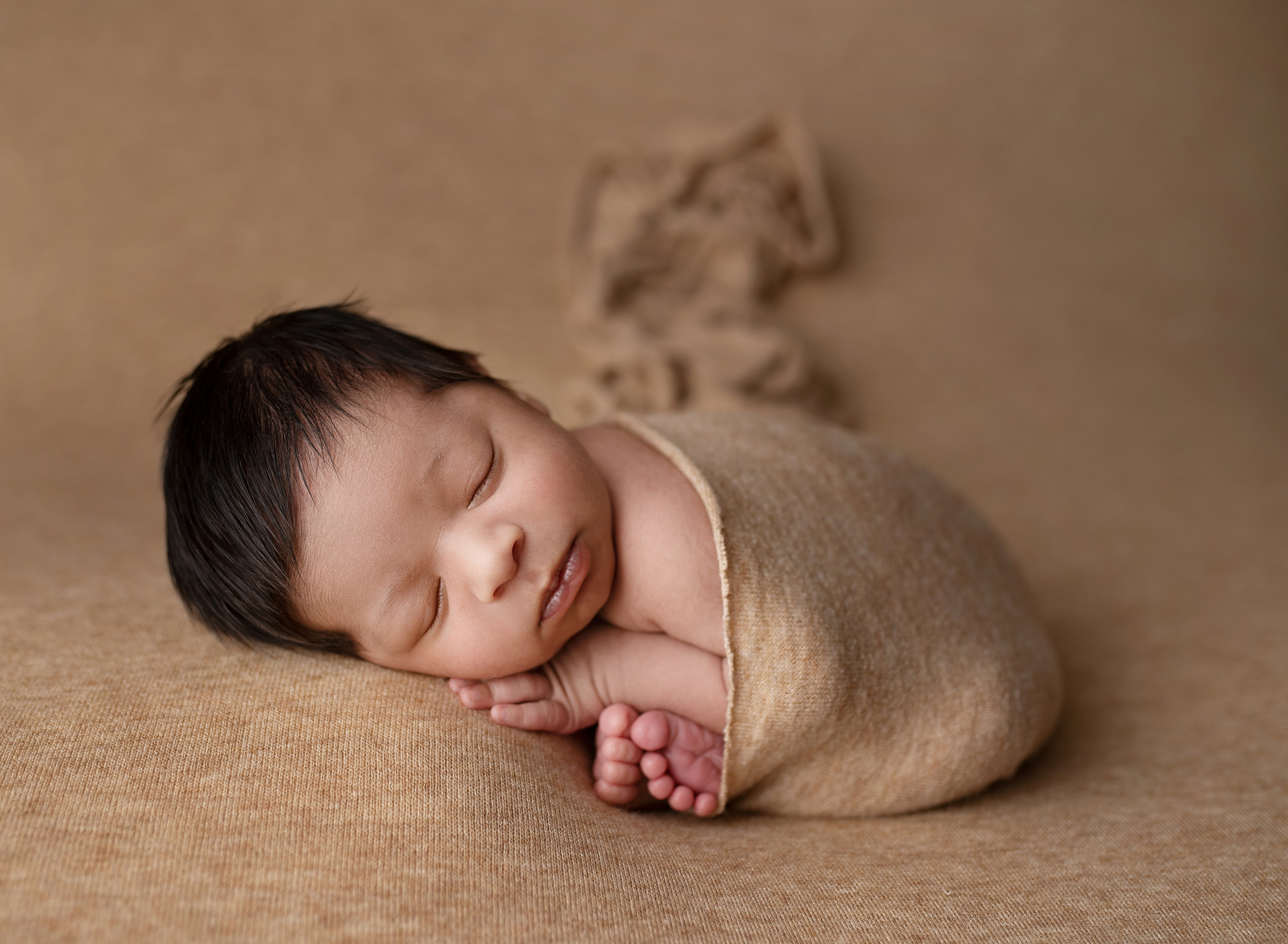 palm beach newborn photographer