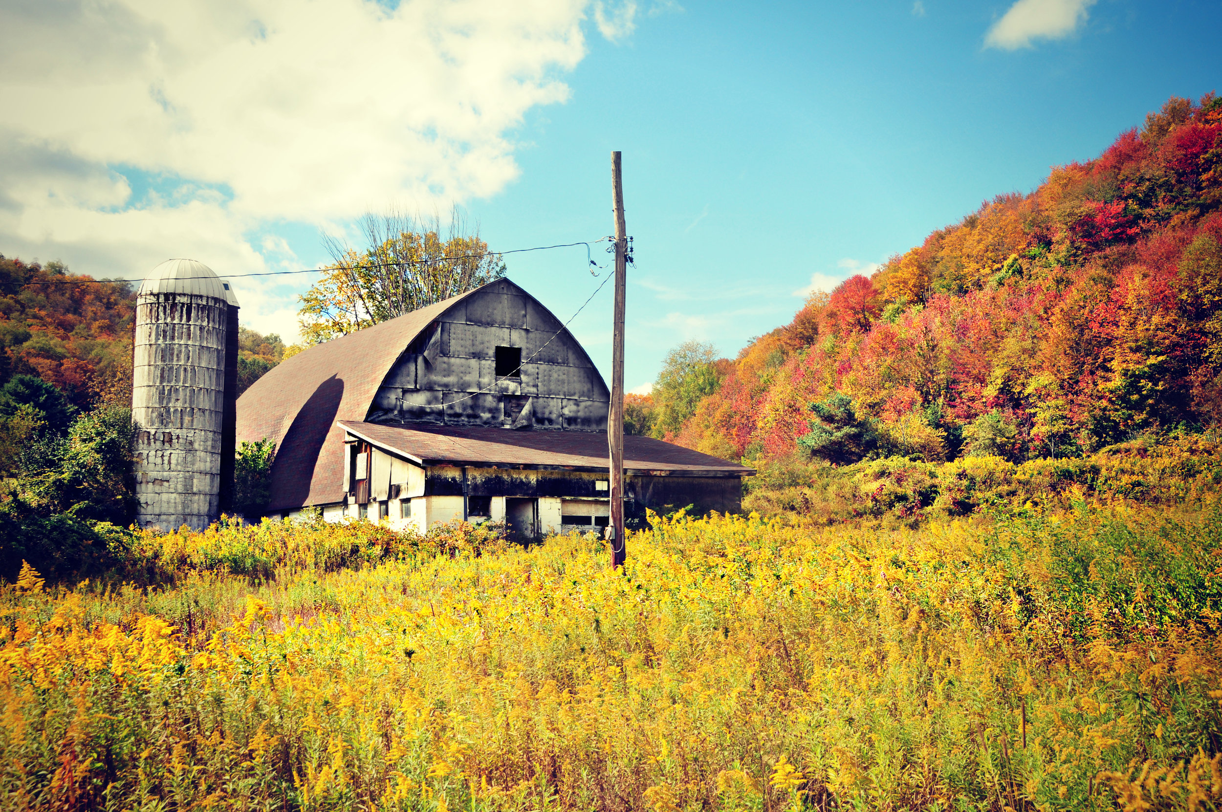 Potter County, PA in autumn