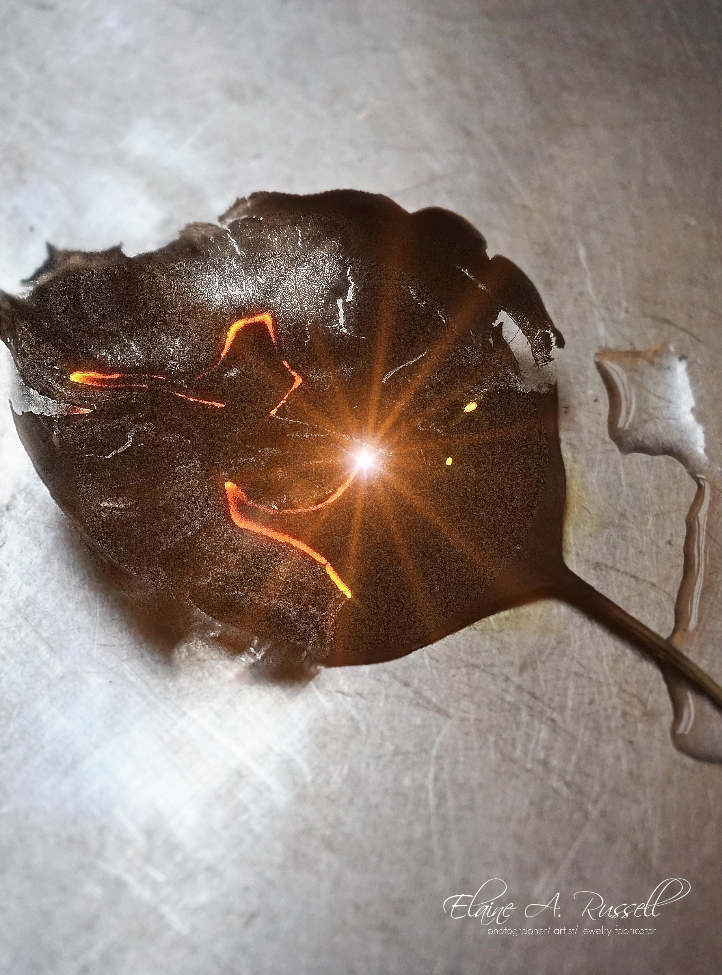 BurningLeaf2.jpg