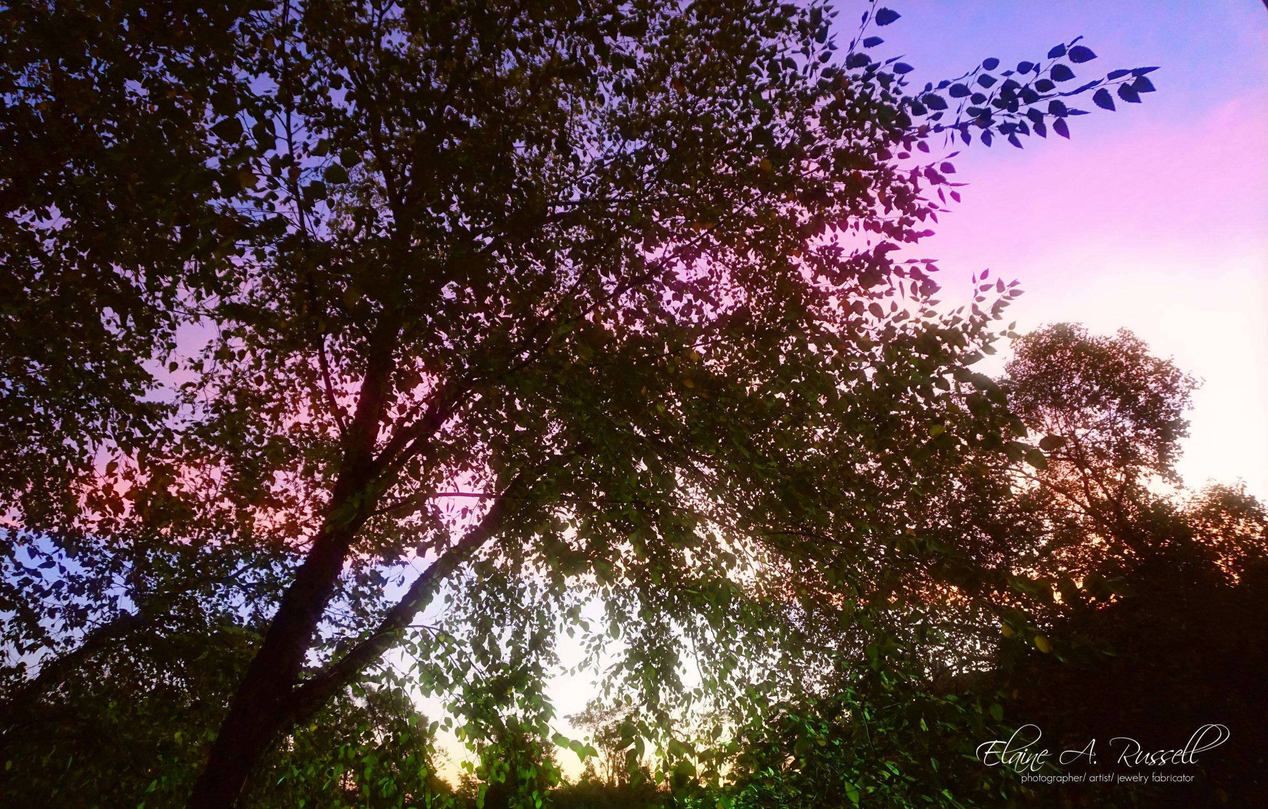 Sunrise2 (1).jpg