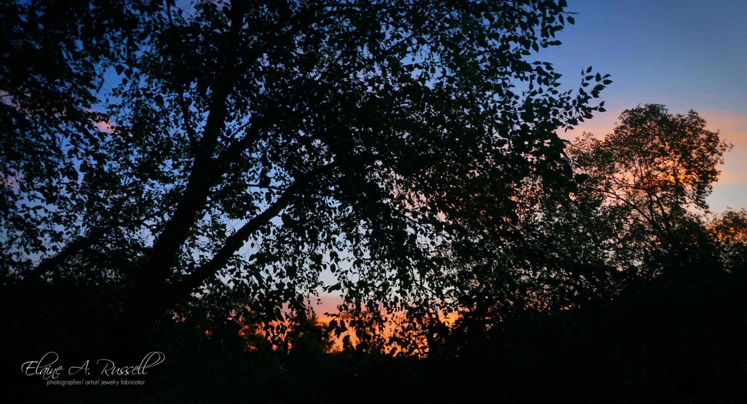 Sunrise2 (2).jpg