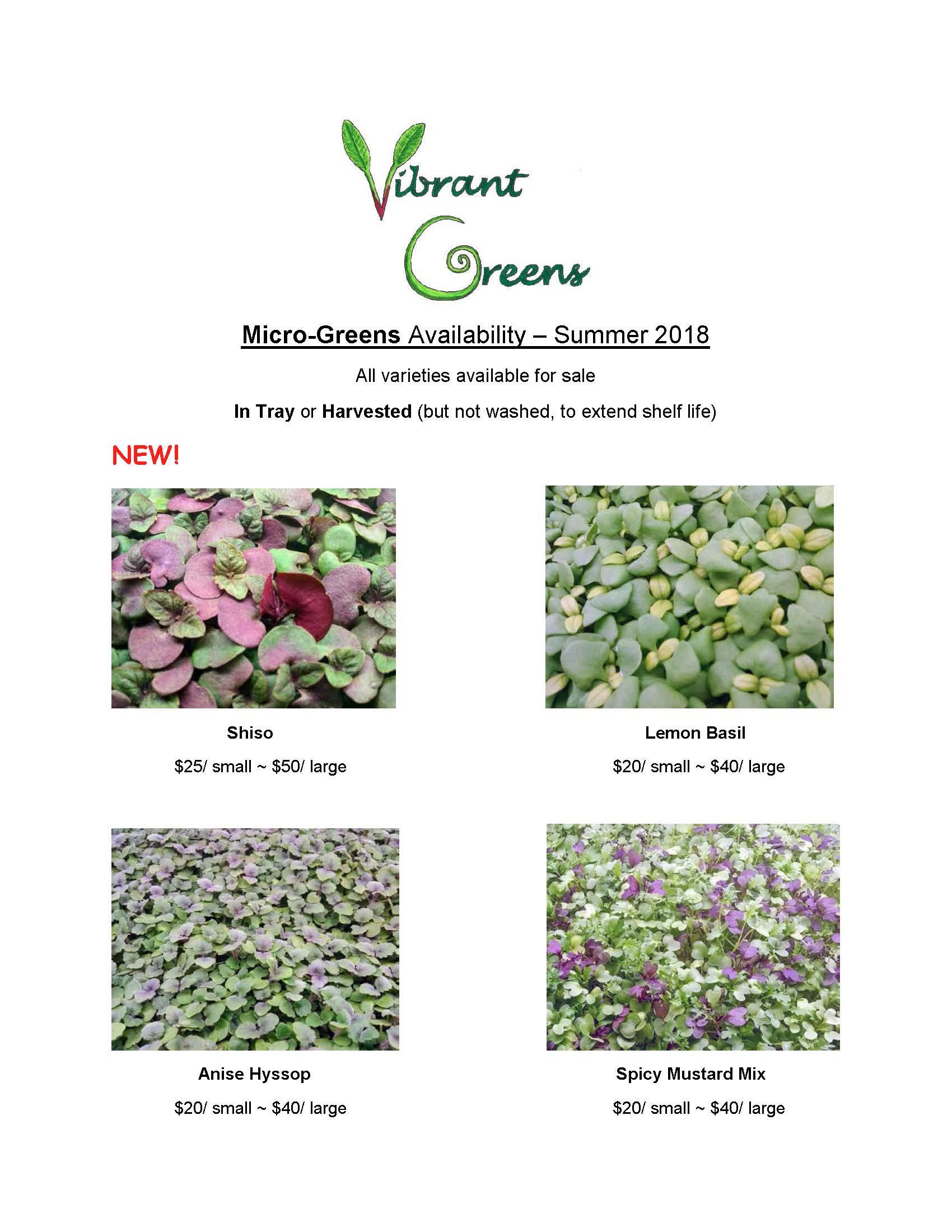 Vibrant Greens - Fresh Sheet Summer 2018 (updated logo)_Page_1.jpg