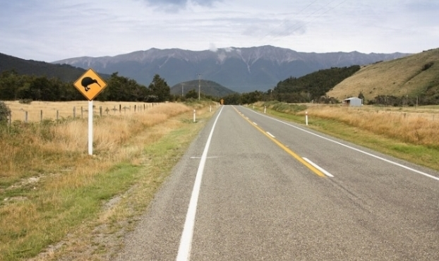 slow-down-kiwis-nz.jpg