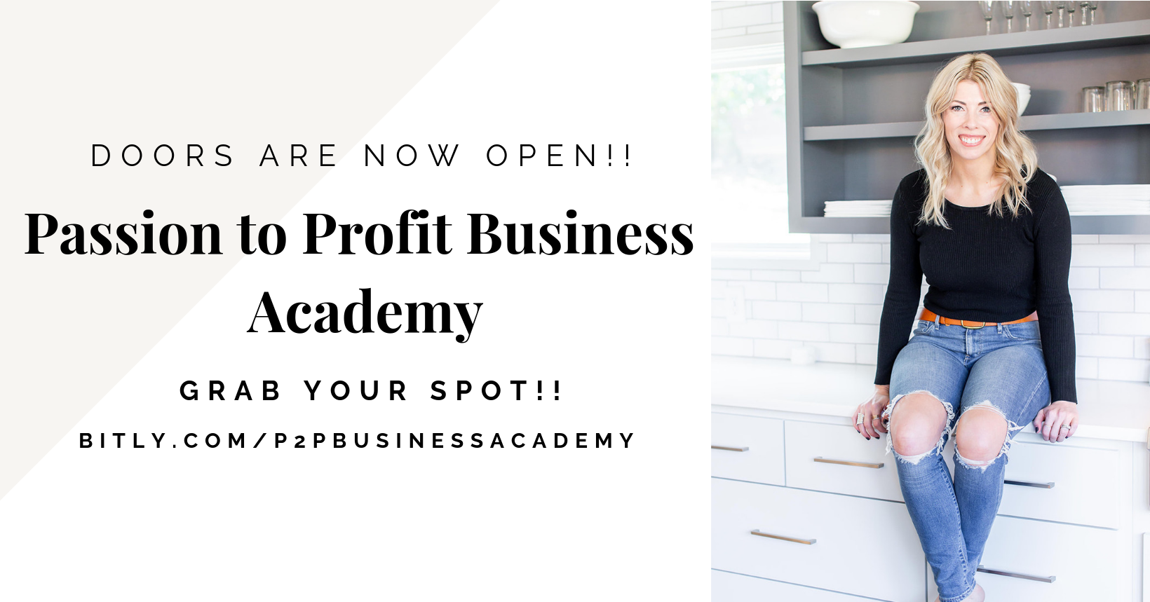 P2P Business Academy FB Group Cover .png