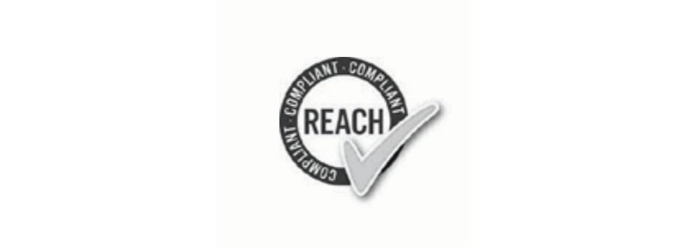 reach_logo_6.png