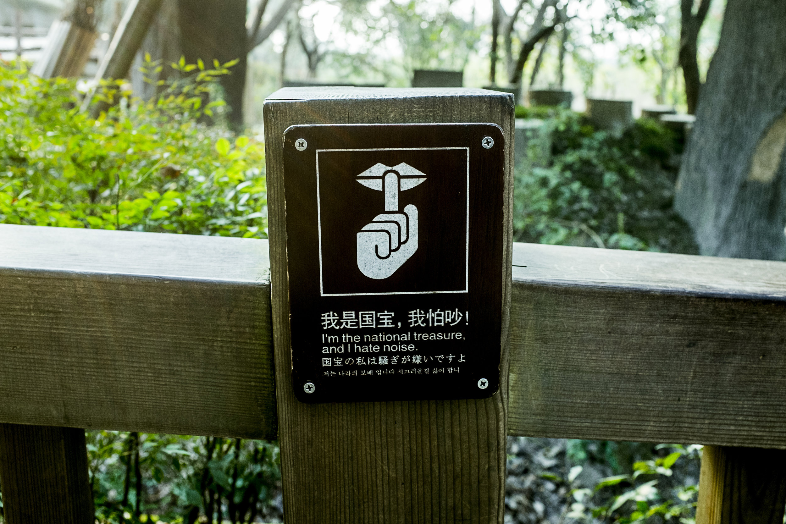 Recent research done on human impact on the Panda in captivity has concluded that Panda has ultrasonic hearing. This research is aimed to give a deeper understanding of how Pandas communicate with each other. Therefore, there are already signs around Pandaparks where the audience is asked to keep the noise level down.