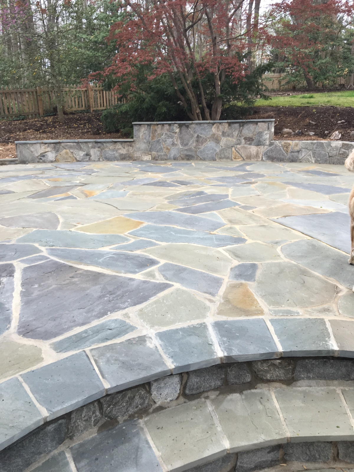 Multi-colored Irregular Flagstone Patio, Seatwall and Steps.jpg