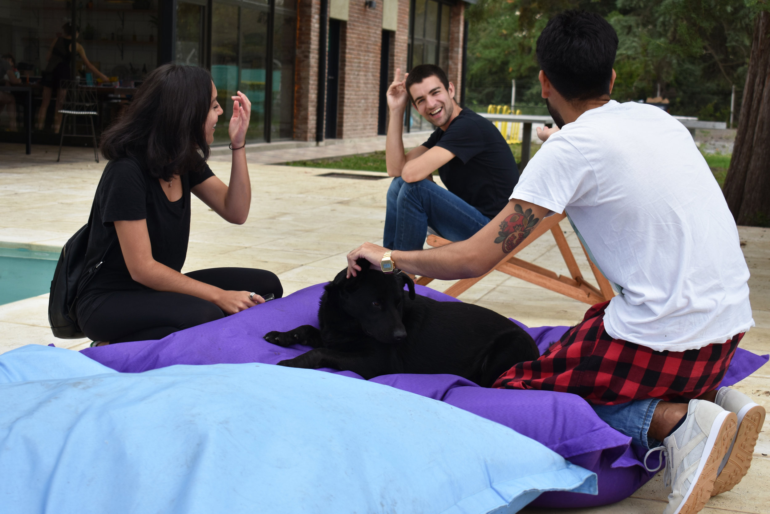 _2 - Casa Campus se encarga de la promoción, ocupación y mantenimiento de tu unidad.