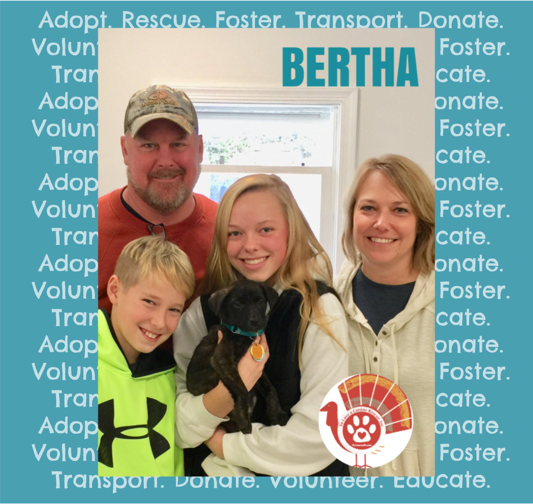 BERTHA.PNG