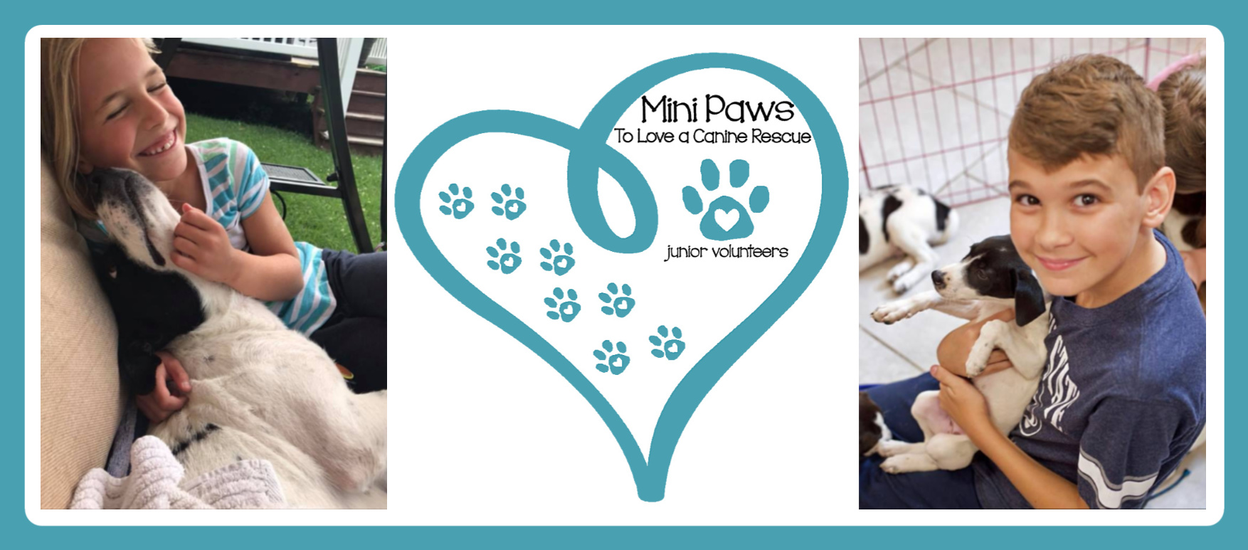 Mini Paws Website Banner.jpg