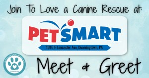 Petsmart-DTown-Facebook-Event-Cover-copy.jpg