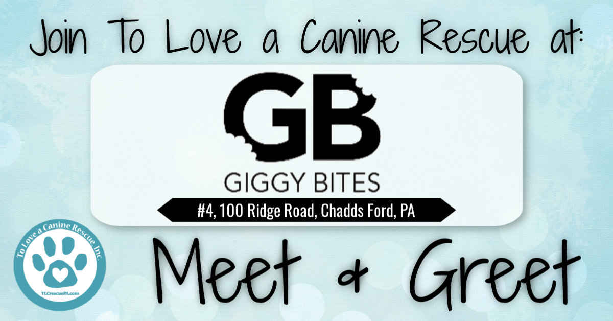 GiggyBites Facebook Event Cover.png
