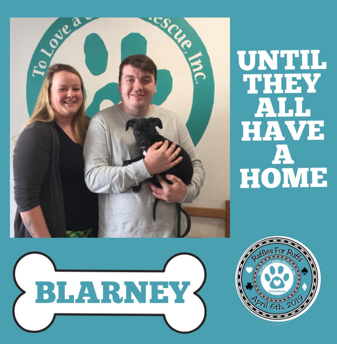 Blarney.PNG