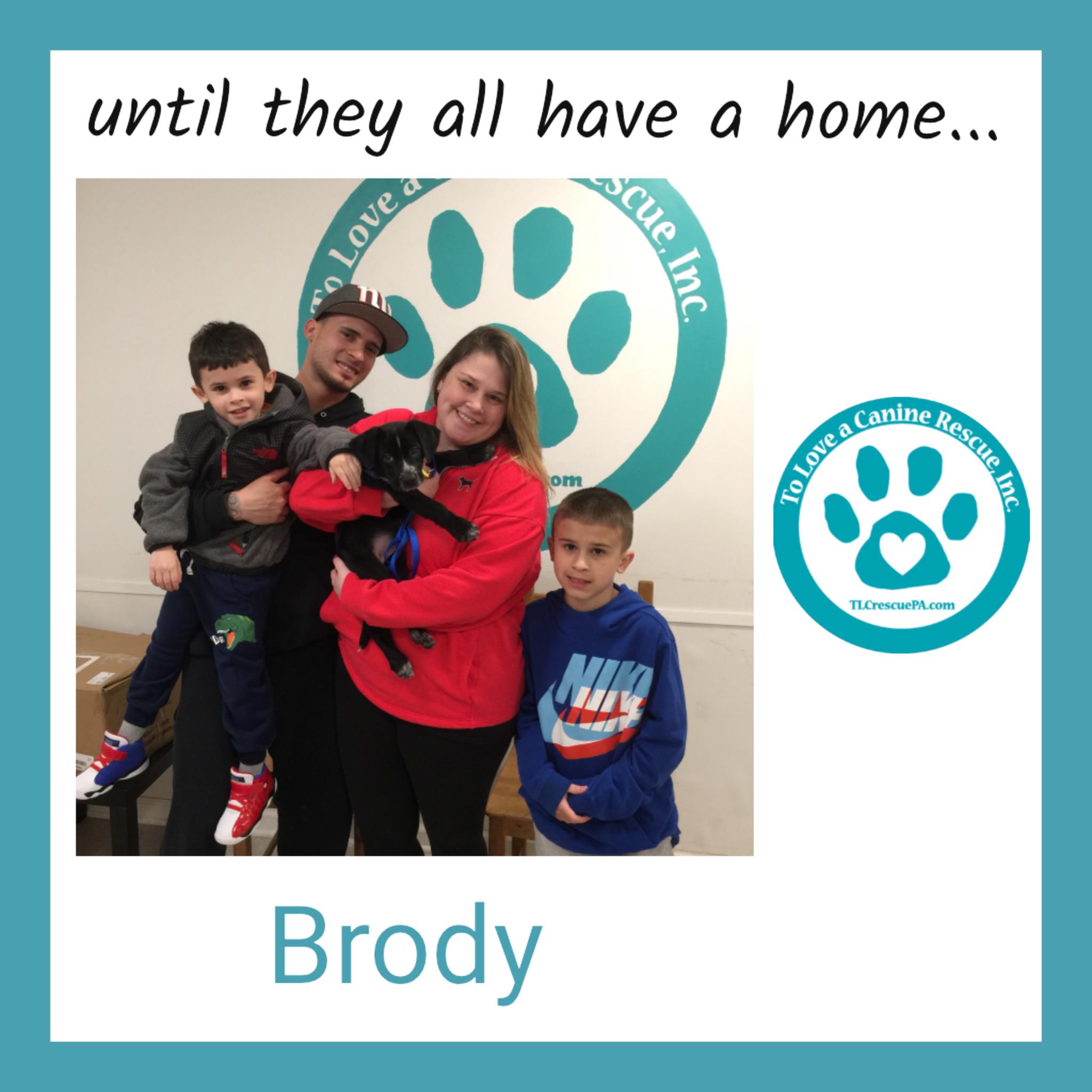 Brody.PNG