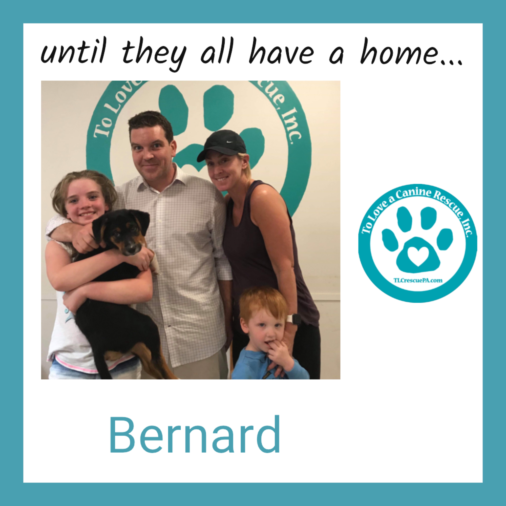 Bernard.PNG