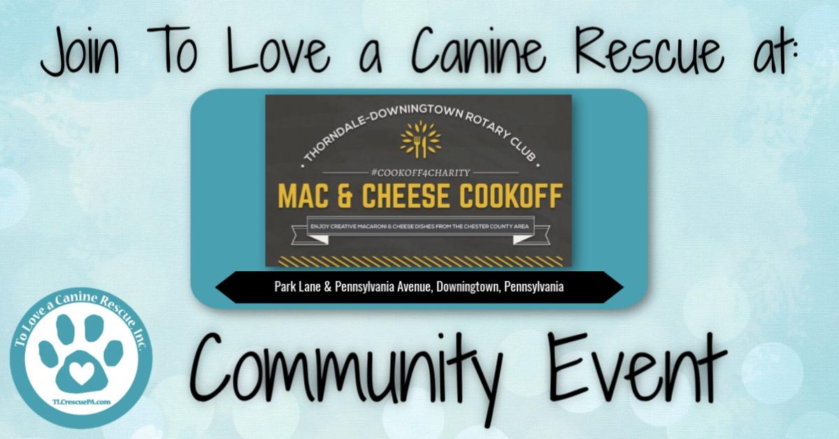 Mac n Cheese Cookoff.jpg