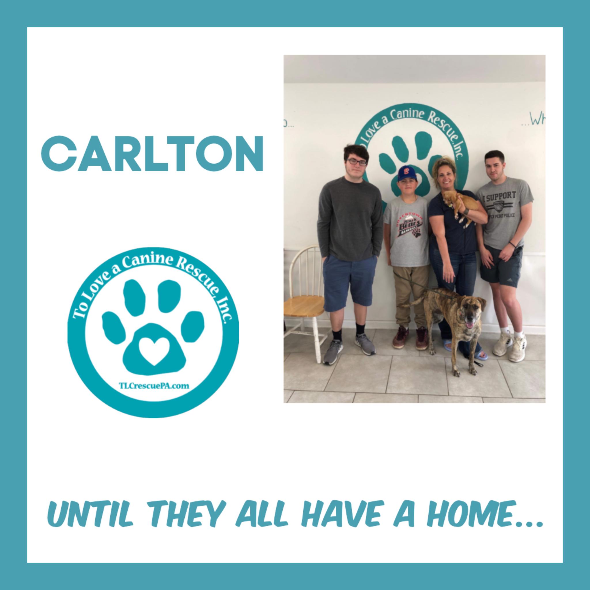 Carlton.PNG
