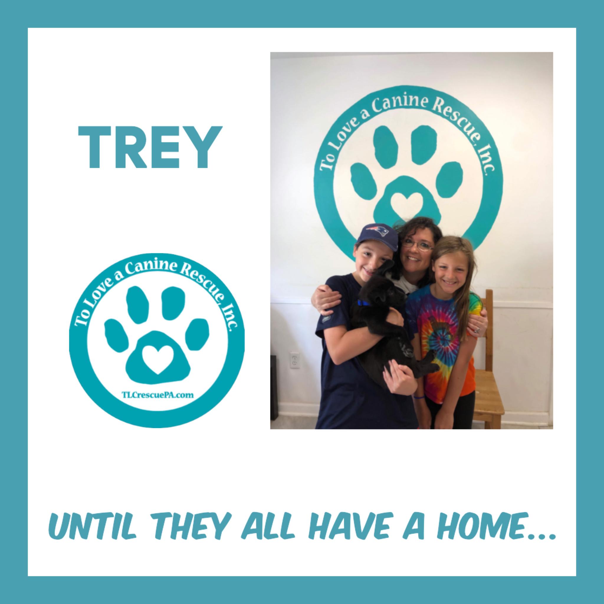 Trey.PNG