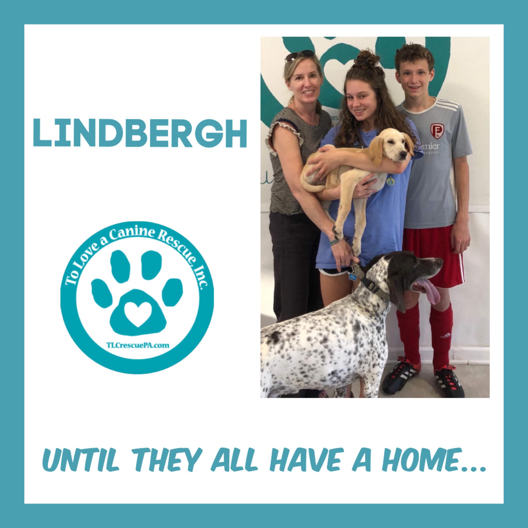 Lindbergh .PNG