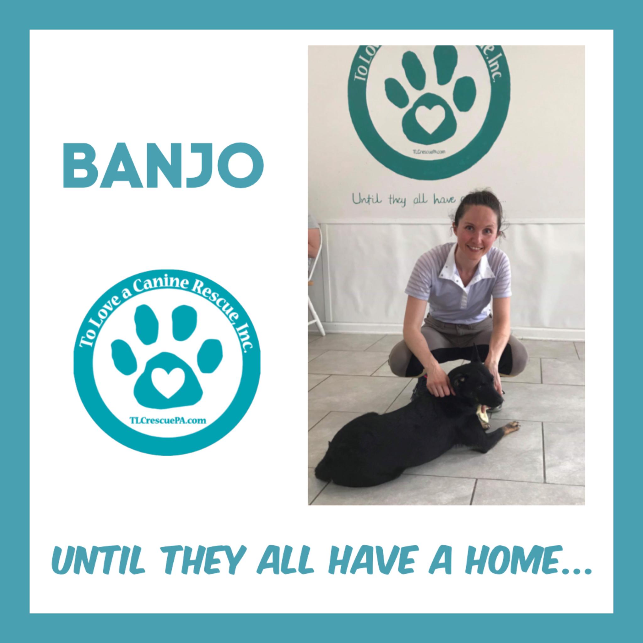 Banjo.PNG