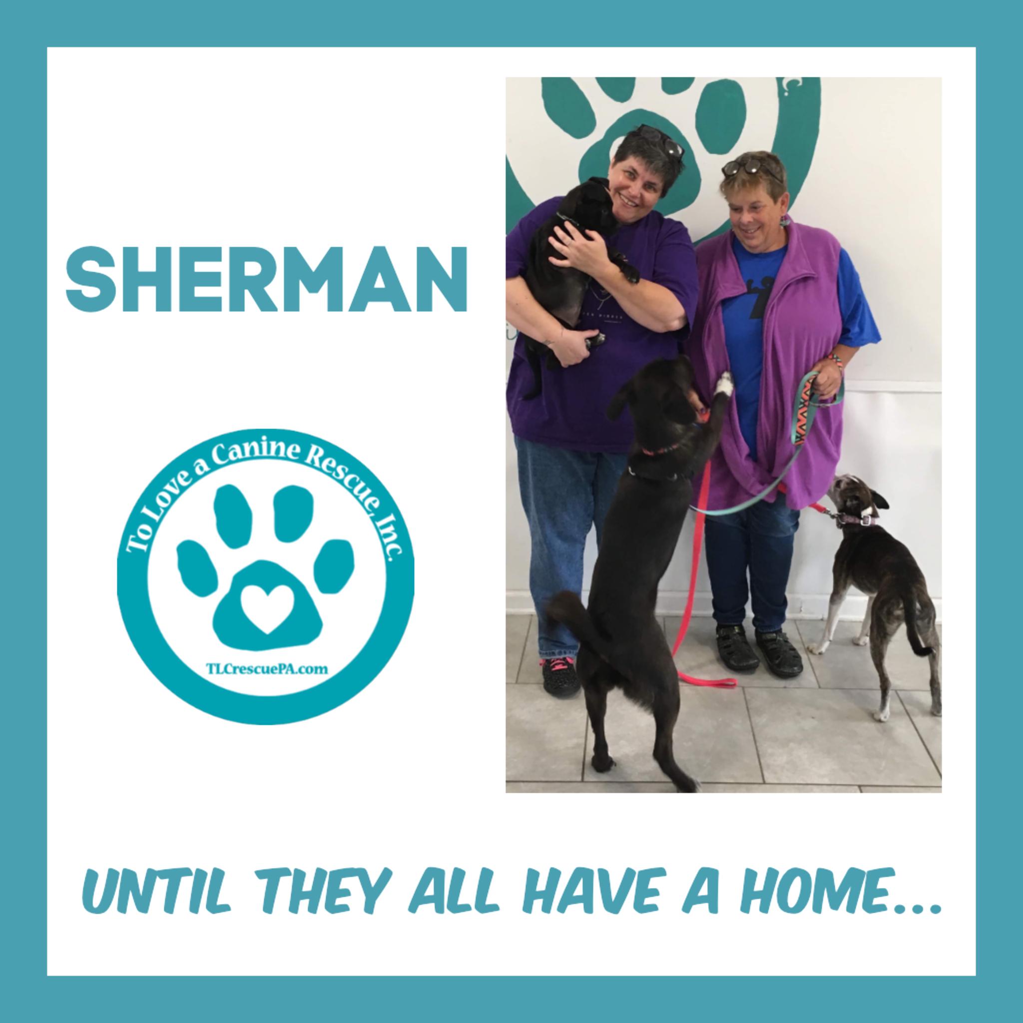 Sherman.PNG