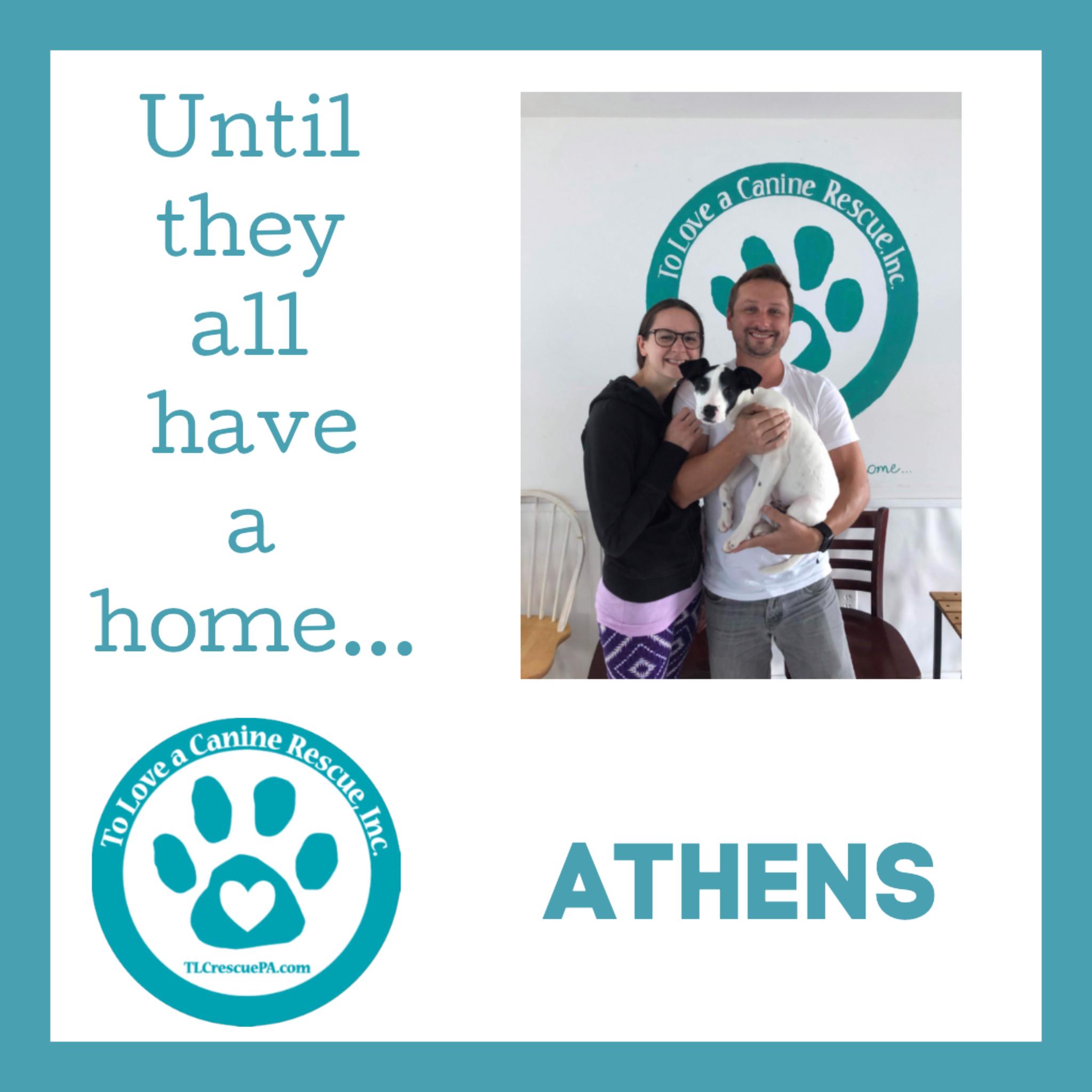 Athens.PNG.jpeg