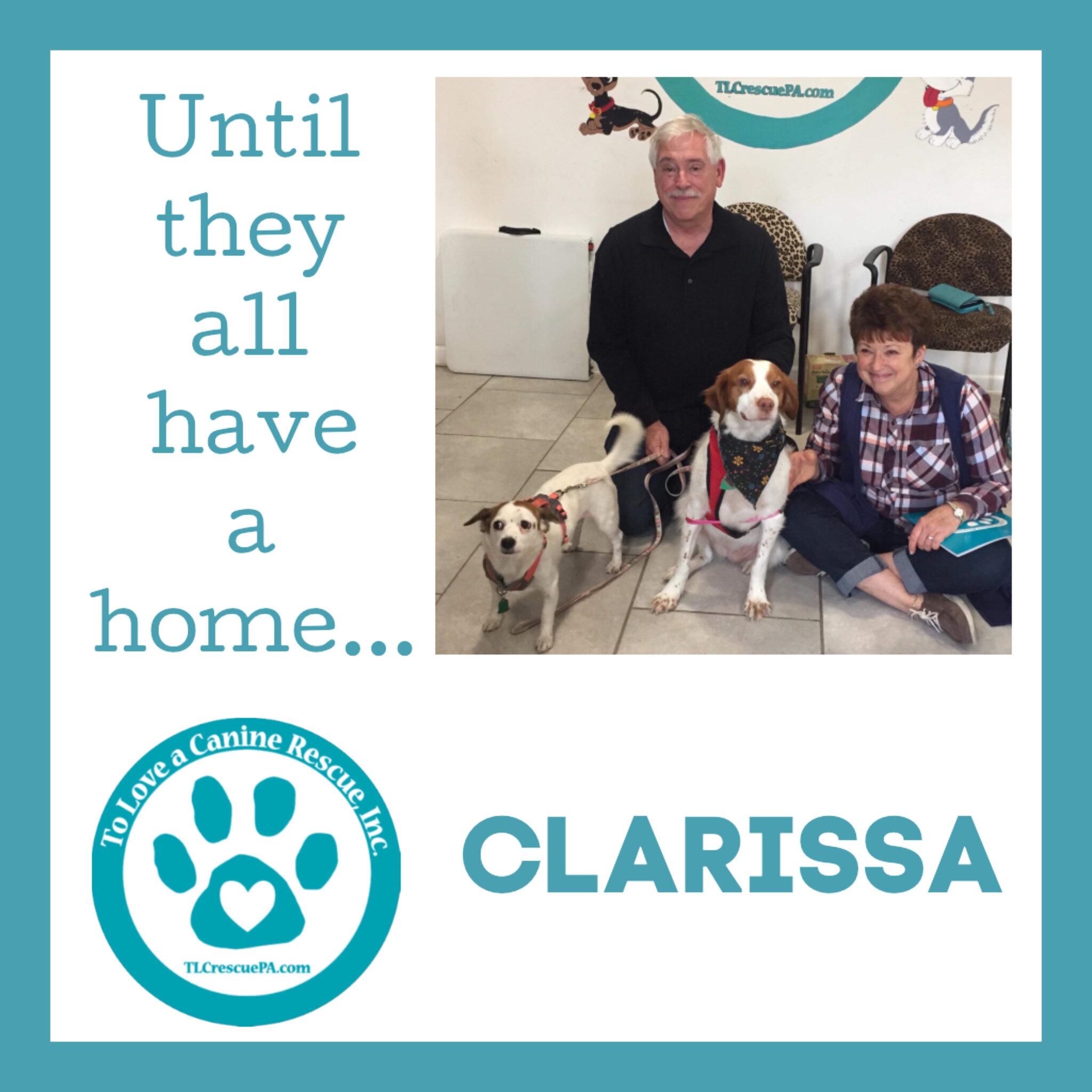 Clarissa.PNG