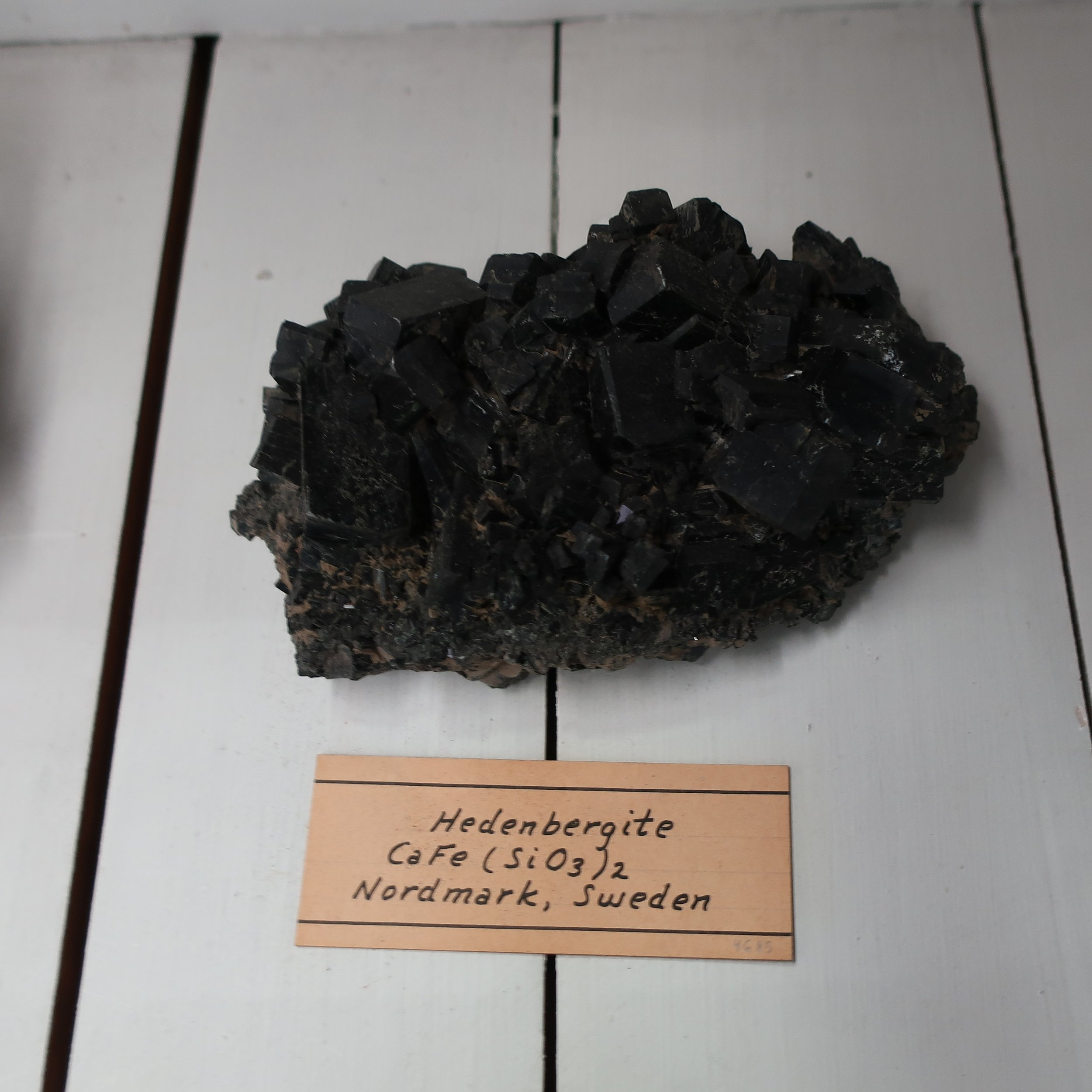 """Hedenbergite  is a variety of cocolite from Zuneburg in Sweeden, its chemical contents vary but little from the former species. it is named in honor of the Chemist Hedenburg, the French Mineralogist Beudant places several varieties under that name."""
