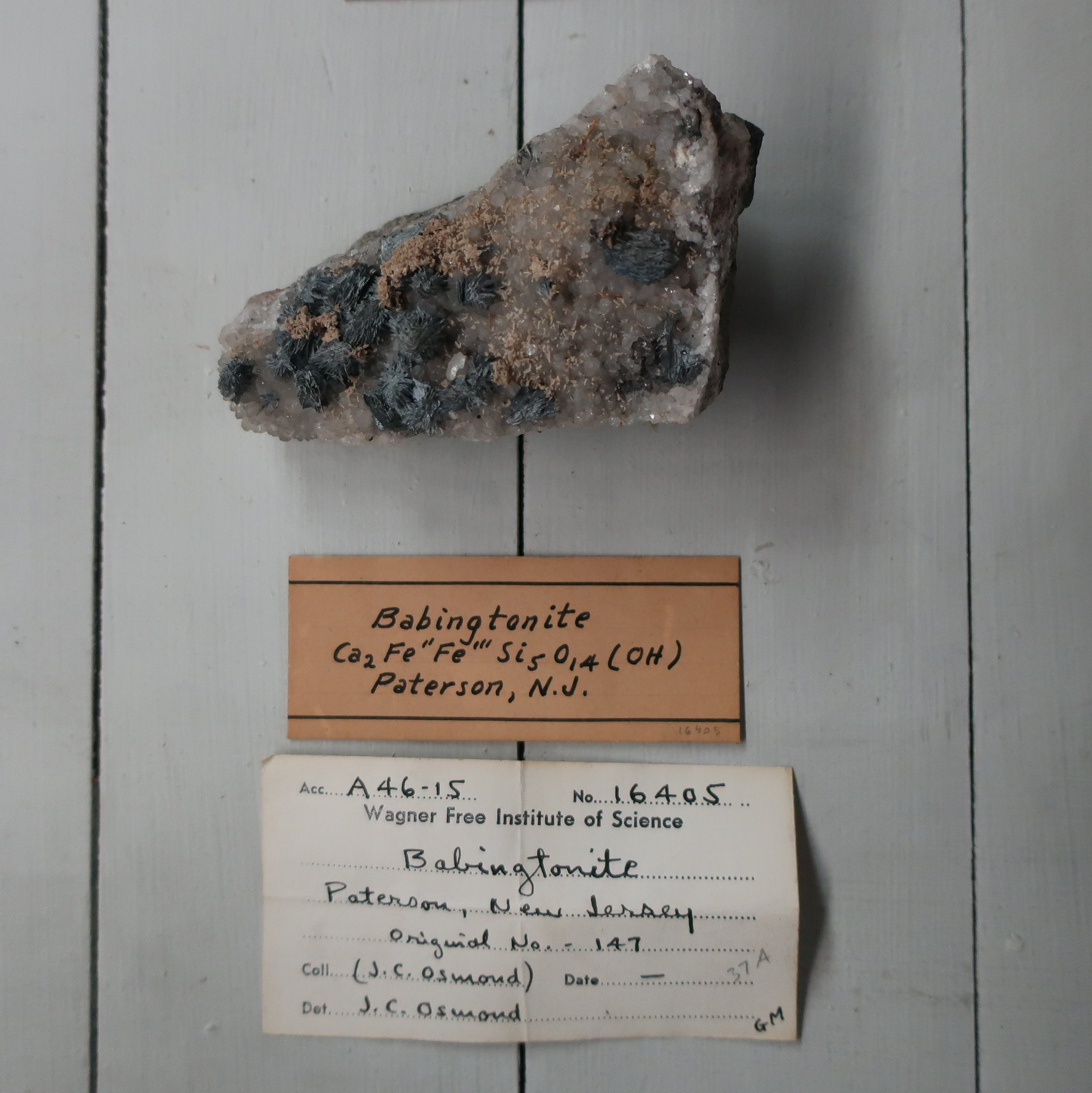 """Babingtonite  is another variety of Augite, the lustre is vitrious, surface brilliant, B.B. it fuses into a black enamel. It resembles some of the dark varieties of augite from which it was first distinguished by Levy. It is composed of Silica Iron manganeese and lime with a trace of titanium. But it would seem, that no one has had sufficient of this mineral for a thorough analysis, it occurs in very distinct crystals at Arendal in Norway, with epedote and Garnet. The only locality in the U.S. is at Charleston, Mass."""