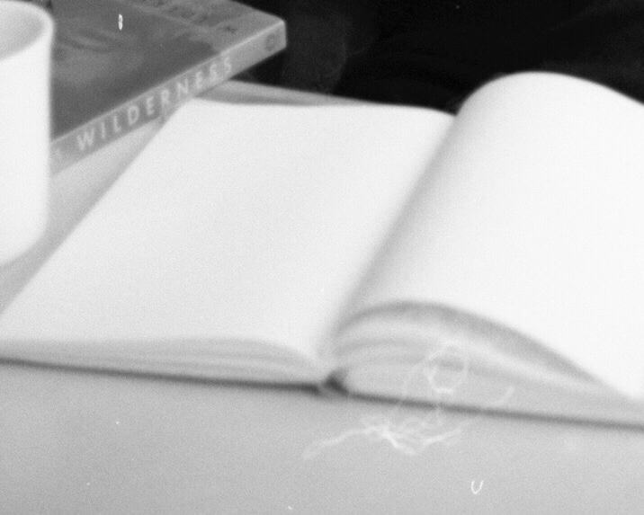 Journal_Daria_02