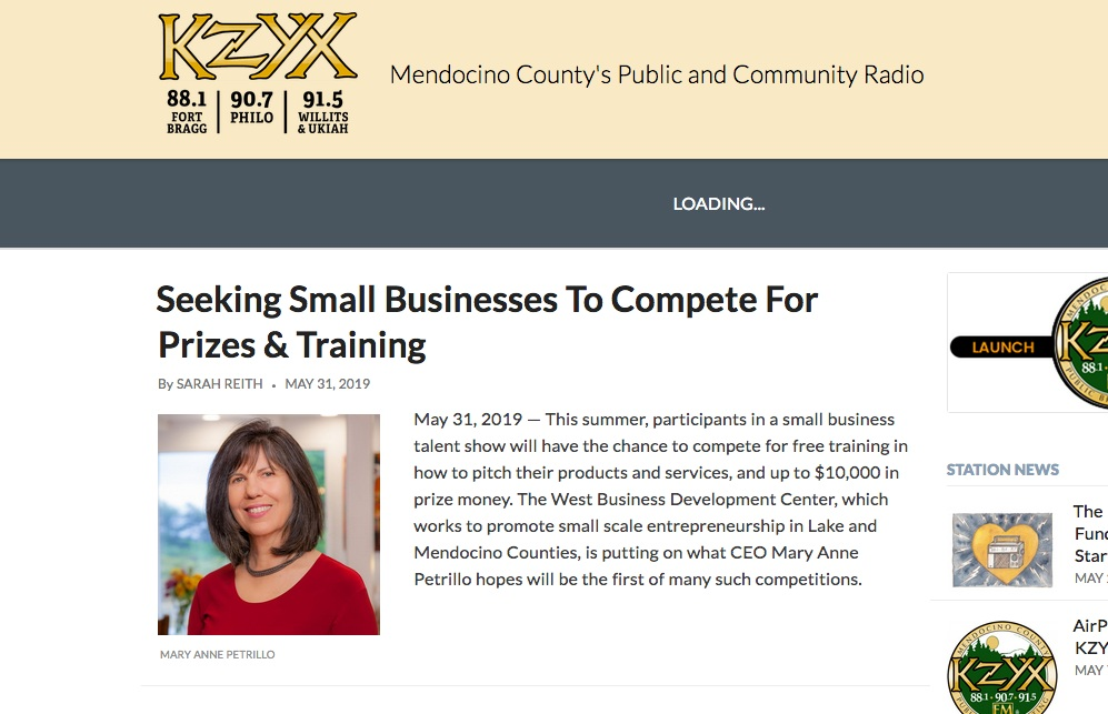 Mary Anne Petrillo, CEO of West Business Development Center