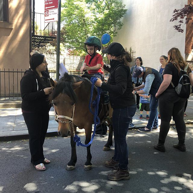 Get a chance to ride a pony in Brooklyn! 🐴