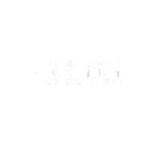 Playfish.png