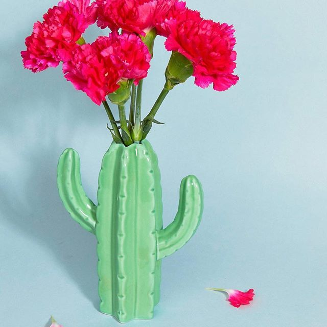 🌷🌵Shop our cactus vase now🌵🌷! Perfect for brightening☀️ up your windowsill on a rainy day🌧! Photo credit 📸ASOS #cactus #cactalicious #cactusvase #flowers #brightenyourday #vase #dailydecordose #interiorinspo #brightinteriors #colourfuldecor #homedecor #homestyle #homeaccessories #sassandbelle #homeatlast #colourfuldecor #homewares #homewaresonline #homewaresaddict #interiorsonabudget