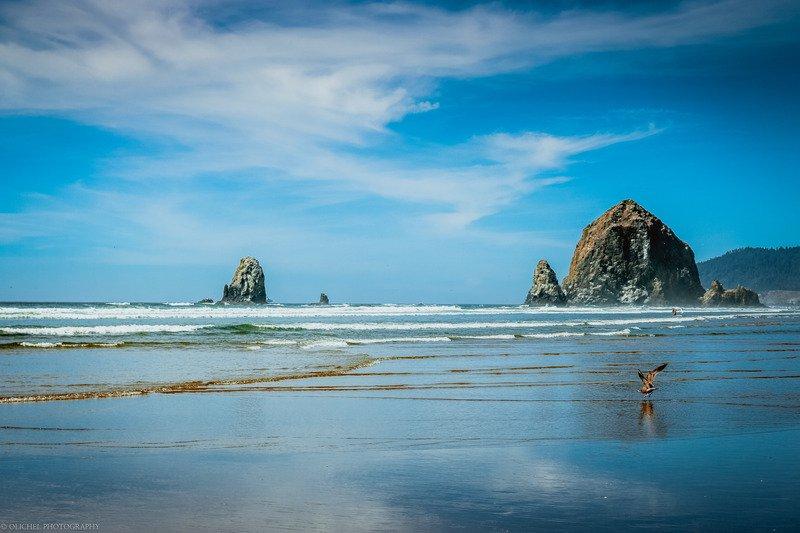 Haystack Rock 1.jpg