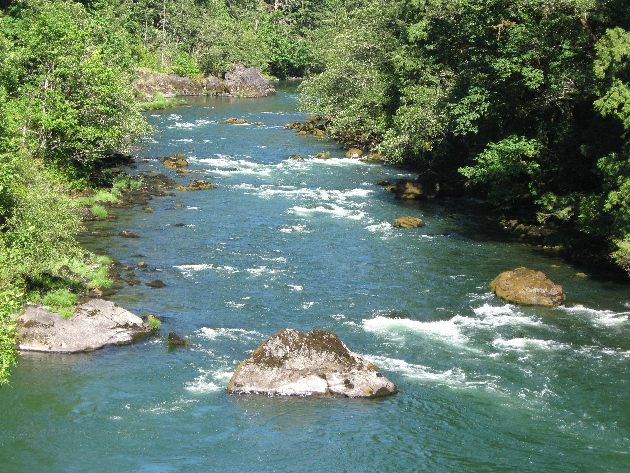 North Fork of the Santiam River.JPG