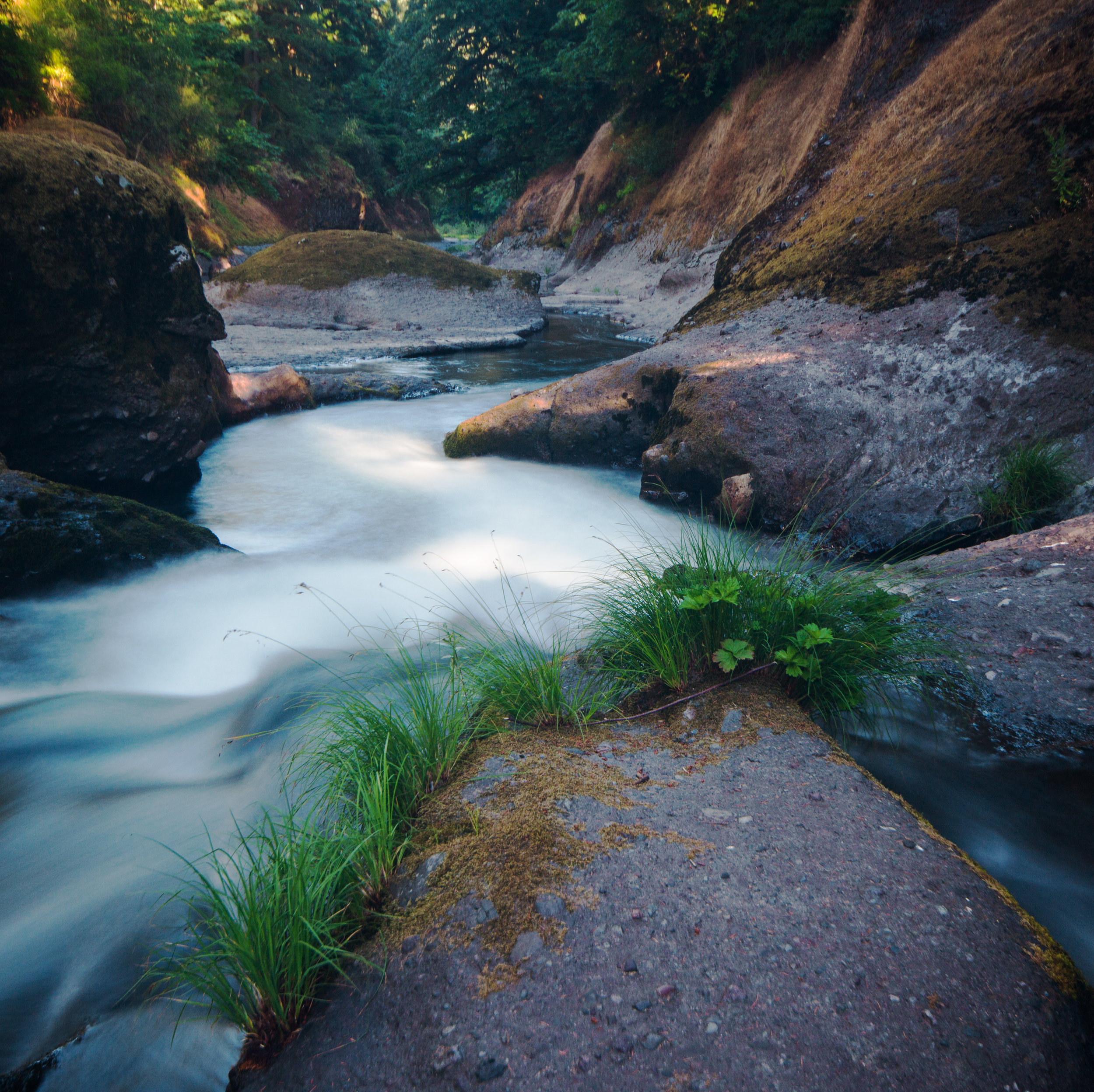 Cascadia.jpg