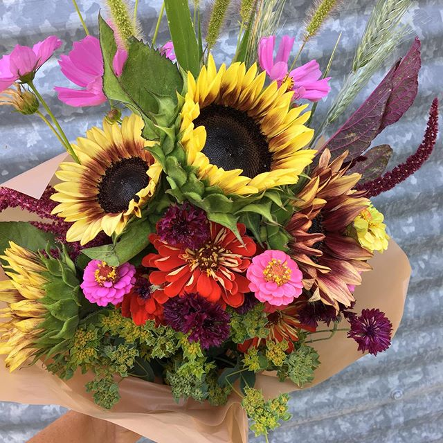 Fall flower subscriptions are open! August and September are peak season for local flowers. Enjoy them in your home by signing up for a four week, eight week, or six week bouquet subscription.  Spots are limited, so sign up today!  #localflowers #buylocal #florageutah Link to sign up in the bio.