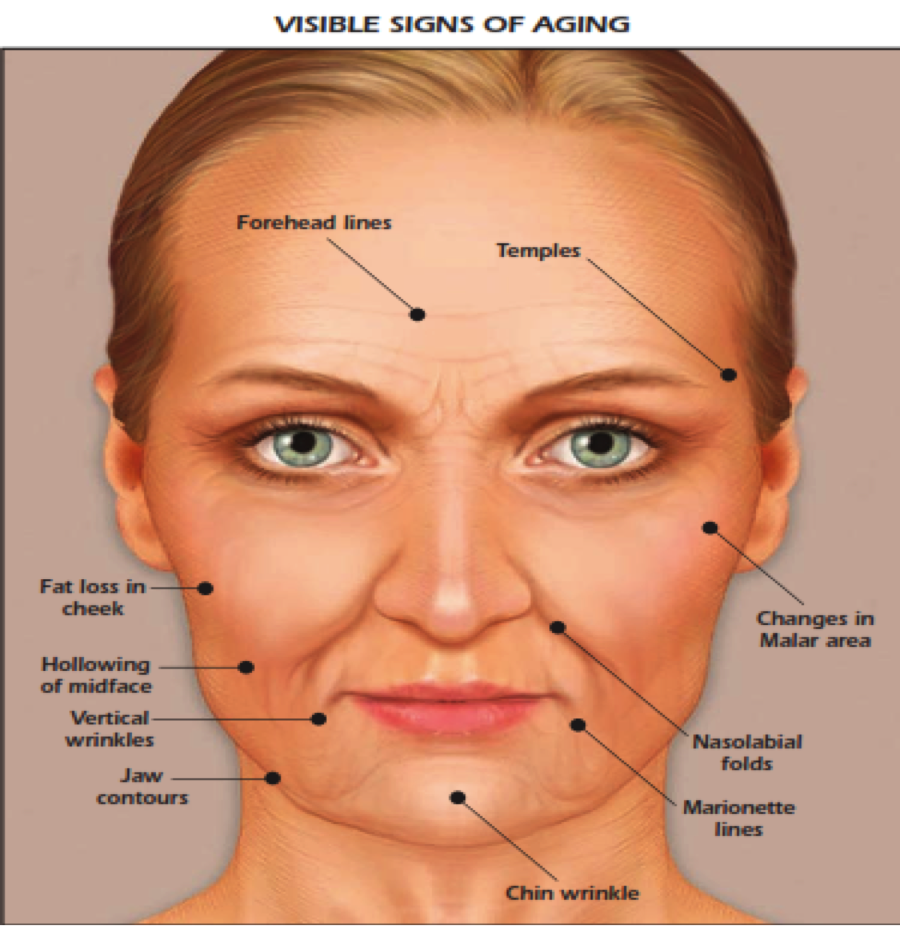 Aging-face (1).png