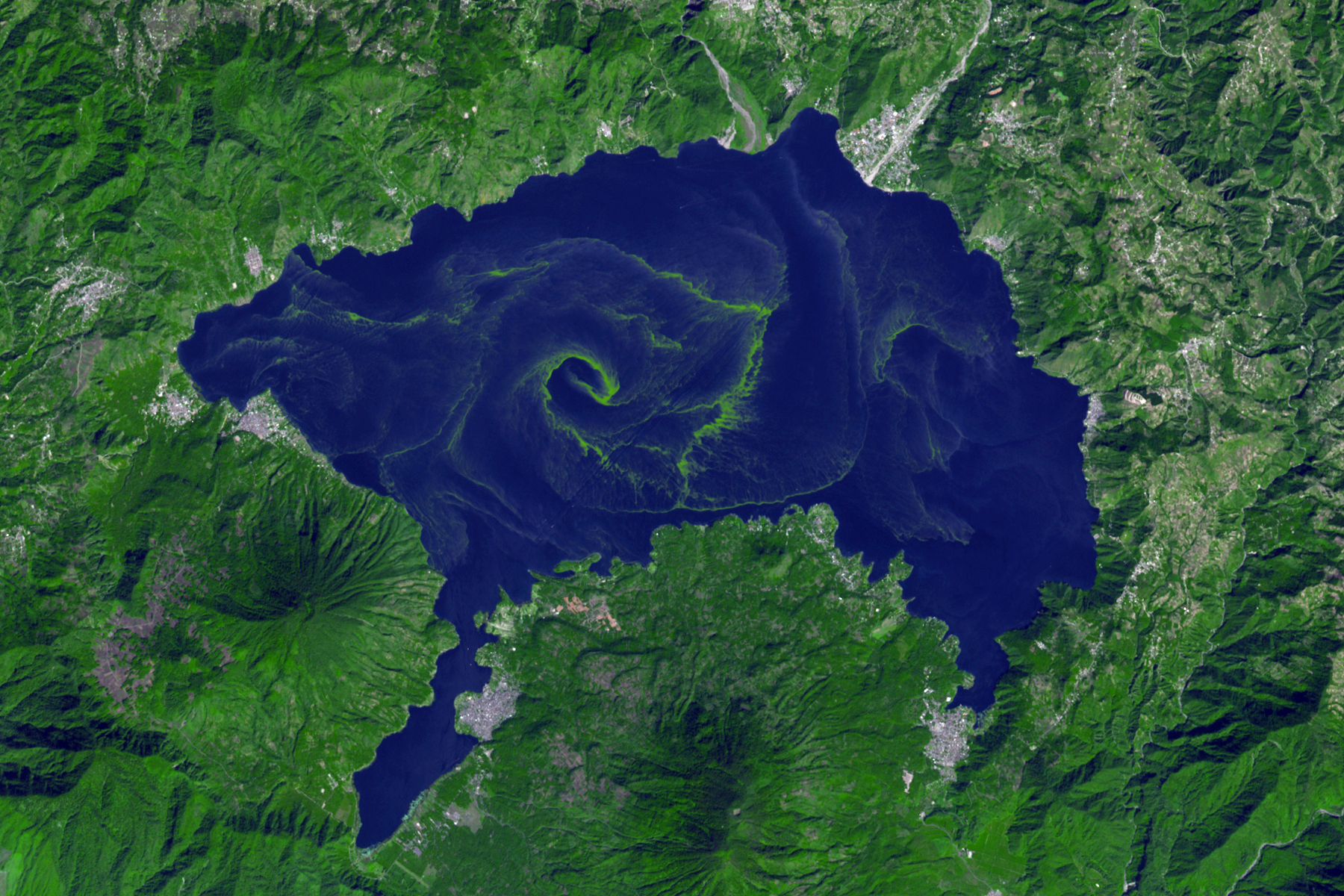 Nasa Earth Observatory    - Algae Blooms in Lake Atitlan (2009)